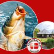 Dänemark Angelurlaub Ferienhaus Katalog
